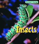 Insects - Theodorou, Rod