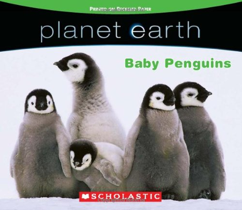 Planet Earth: Baby Penguins - Quinlan B. Lee