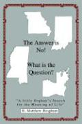 The Answer Is No! What Is the Question?: A Little Orphan's Search for the Meaning of Life - Bingham, B. Matthew