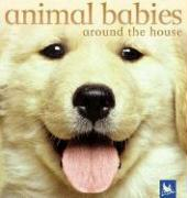 Animal Babies Around the House - Weber, Vicky