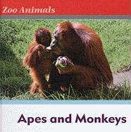 Apes and Monkeys Apes and Monkeys