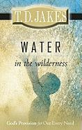 Water in the Wilderness: God's Provision for Our Every Need - Jakes, T. D.