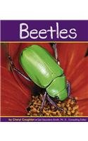 Beetles (Insects) - Coughlan; Cheryl
