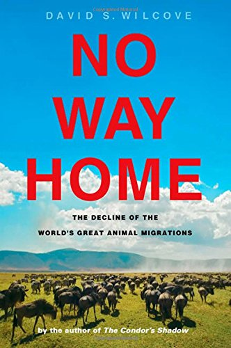 No Way Home: The Decline of the World's Great Animal Migrations - David S. Wilcove
