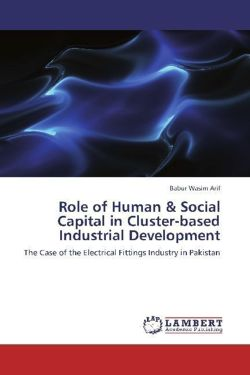 Role of Human & Social Capital in Cluster-based Industrial Development
