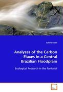Analyzes of the Carbon Fluxes in a Central BrazilianFloodplain