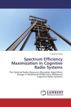 Spectrum Efficiency Maximization in Cognitive Radio Systems