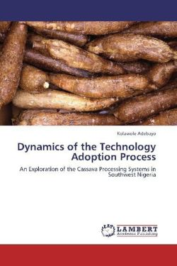 Dynamics of the Technology Adoption Process