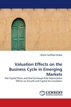 Valuation Effects on the Business Cycle in Emerging Markets: Net Capital Flows and Real Exchange Rate Depreciation Effects on Growth and Capital Accumulation