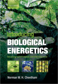 Introducing Biological Energetics: How Energy and Information Control the Living World - Norman W. H. Cheetham