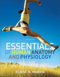 Essentials of Human Anatomy and Physiology - With CD - Elaine Nicpon Marieb