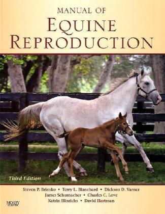Manual of Equine Reproduction - Brinsko, Steven P. / Blanchard, Terry L. / Varner, Dickson D.