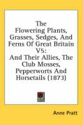 The Flowering Plants, Grasses, Sedges, and Ferns of Great Britain V5: And Their Allies, the Club Mosses, Pepperworts and Horsetails (1873)