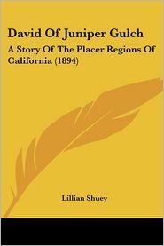 David of Juniper Gulch: A Story of the Placer Regions of California (1894) - Lillian Shuey