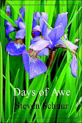 Days of Awe - Steven Schnur