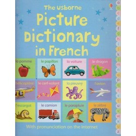 Picture Dictionary In French - Felicity Brooks