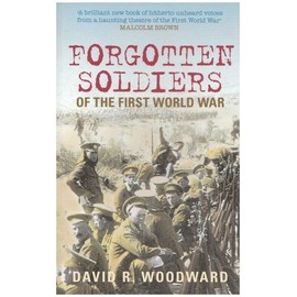 Forgotten Soldiers Of The First World War - David Woodward