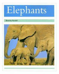 PM Collection : Elephants - Randell