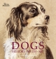 Dogs: History, Myth, Art - Catherine Johns