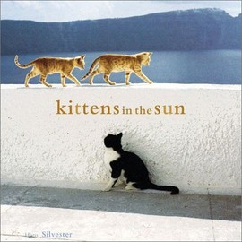 Kittens In The Sun - Hans Silveste