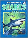 Discovering Sharks and Rays - Nancy Field