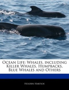 Ocean Life: Whales, Including Killer Whales, Humpbacks, Blue Whales and Others - Hartsoe, Holden Holden, Anthony