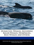 Ocean Life: Whales, Including Killer Whales, Humpbacks, Blue Whales and Others