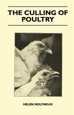 The Culling Of Poultry - Molyneux, Helen