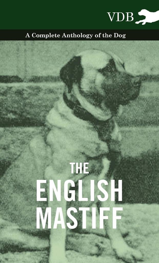 The English Mastiff - A Complete Anthology of the Dog als Buch von Various - Vintage Dog Books