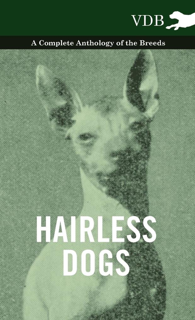 Hairless Dogs - A Complete Anthology of the Breeds als Buch von Various - Vintage Dog Books