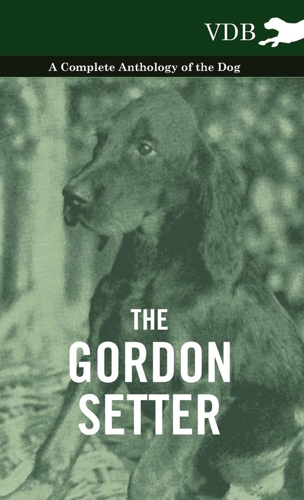 The Gordon Setter - A Complete Anthology of the Dog als Buch von Various - Vintage Dog Books
