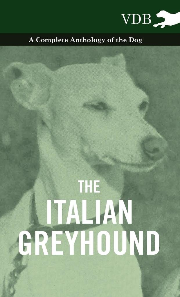 The Italian Greyhound - A Complete Anthology of the Dog als Buch von Various - Vintage Dog Books