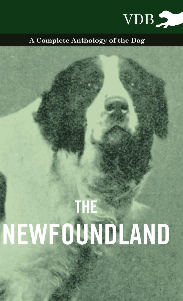 The Newfoundland - A Complete Anthology of the Dog als Buch von Various - Vintage Dog Books