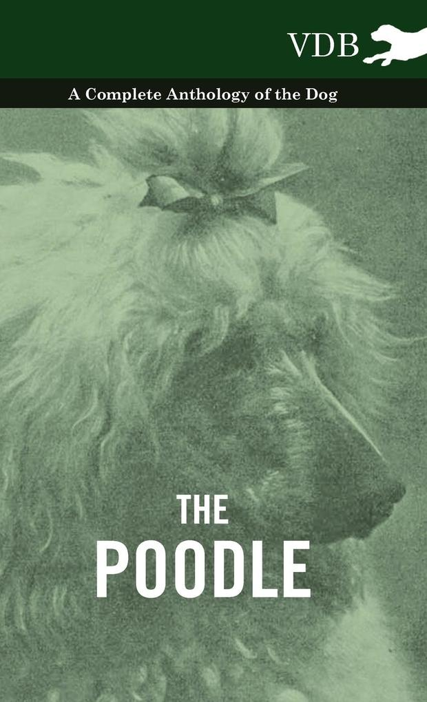 The Poodle - A Complete Anthology of the Dog als Buch von Various - Vintage Dog Books