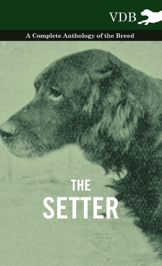 The Setter - A Complete Anthology of the Breed als Buch von Various - Vintage Dog Books