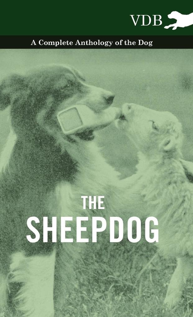 The Sheepdog - A Complete Anthology of the Breeds als Buch von Various - Vintage Dog Books
