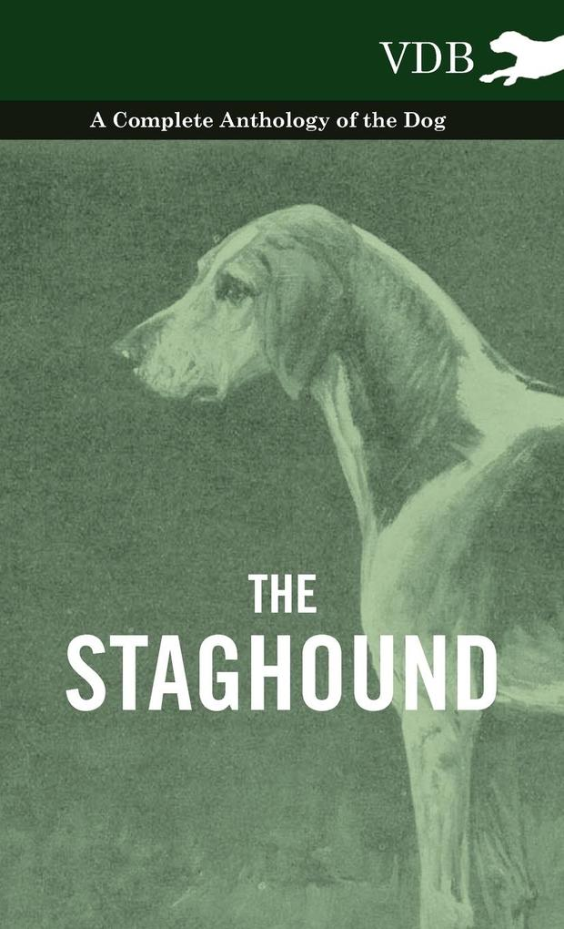 The Staghound - A Complete Anthology of the Dog als Buch von Various - Vintage Dog Books