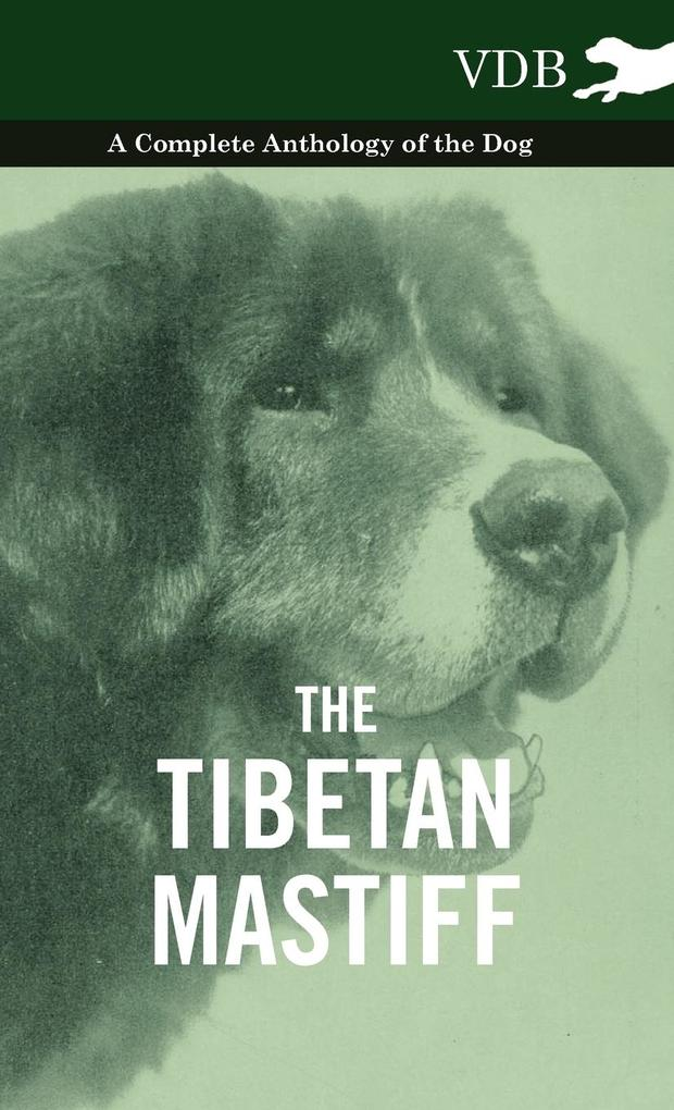 The Tibetan Mastiff - A Complete Anthology of the Dog als Buch von Various - Vintage Dog Books
