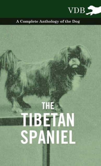 The Tibetan Spaniel - A Complete Anthology of the Dog als Buch von Various - Vintage Dog Books