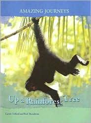 Up a Rainforest Tree - Carole Telford, Rod Theodorou