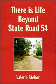 There Is Life Beyond State Road 54 - Valerie Stebor