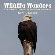 Wildlife Wonders: A Photographic Tribute to the Sandy Ridge Reservation