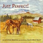 Just Perfect! - Jane Donovan