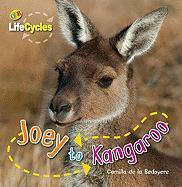 Joey to Kangaroo