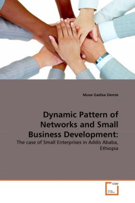 Dynamic Pattern of Networks and Small Business Development: als Buch von Muse Gadisa Demie - VDM Verlag