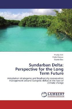 Sundarban Delta: Perspective for the Long Term Future