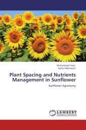 Plant Spacing and Nutrients Management in Sunflower - Muhammad Yasin