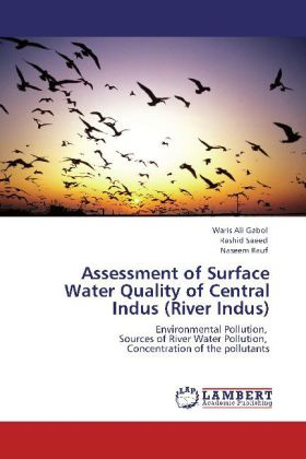 Assessment of Surface Water Quality of Central Indus (River Indus) - Environmental Pollution, Sources of River Water Pollution, Concentration of the pollutants - Ali Gabol, Waris / Saeed, Rashid / Rauf, Naseem