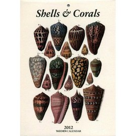 Taschen Shells and Corals  2012 weekly tear off calendar - Albertus Seba