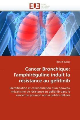 Cancer Bronchique: l'amphiréguline induit la résistance au gefitinib - Identification et caractérisation d'un nouveau mécanisme de résistance au gefitinib dans le cancer du poumon non-à petites cellules - Busser, Benoît
